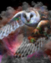 Owl flying at night art Fly By Night - timothy mohan