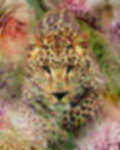 wildlife art Flower Garden Tim mohan
