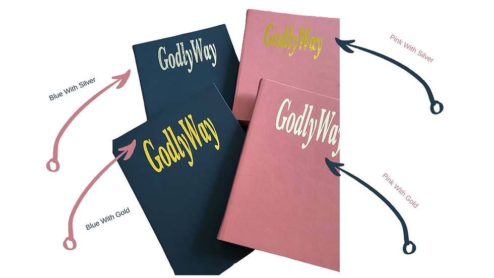 The Godly Way Journal