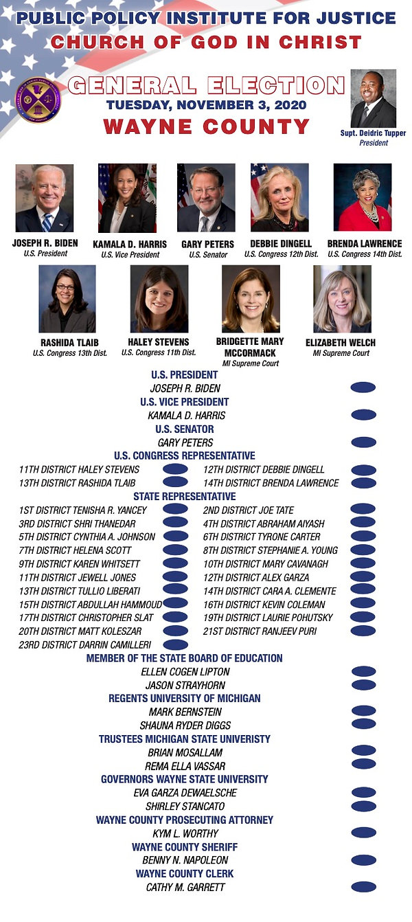 Wayne County Election Flyer.jpg
