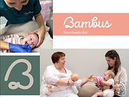 Multi diciplinary clinic with midwife, IBCLCs, family consellor, chiropractors and physiotherapists who all are specialized in women and childrens health. We see many babies and children with feeding difficulties due to tongue-ties.