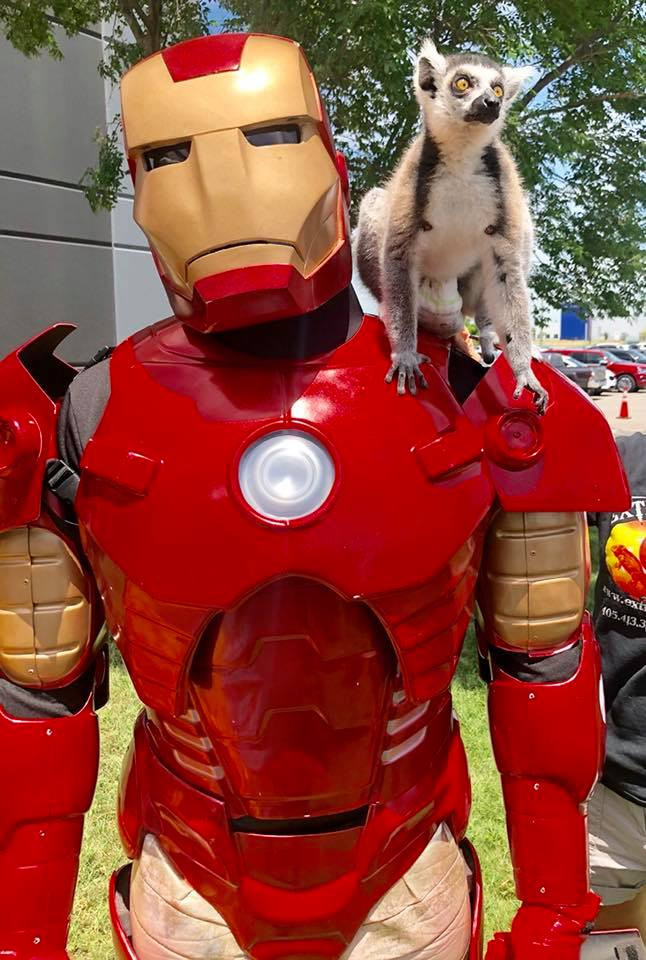 Ironman 3.jpg