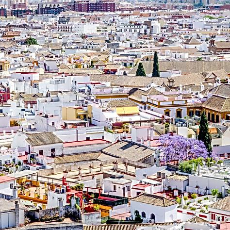 Seville-4.jpg
