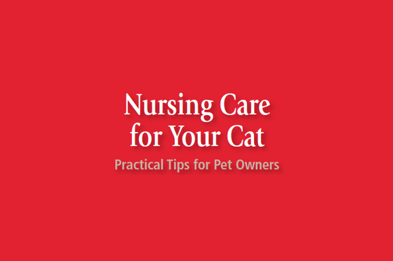 nursing-care-logo.png