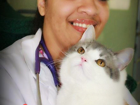 Welcome Our New Veterinarian – Kristina Bazemore, DVM