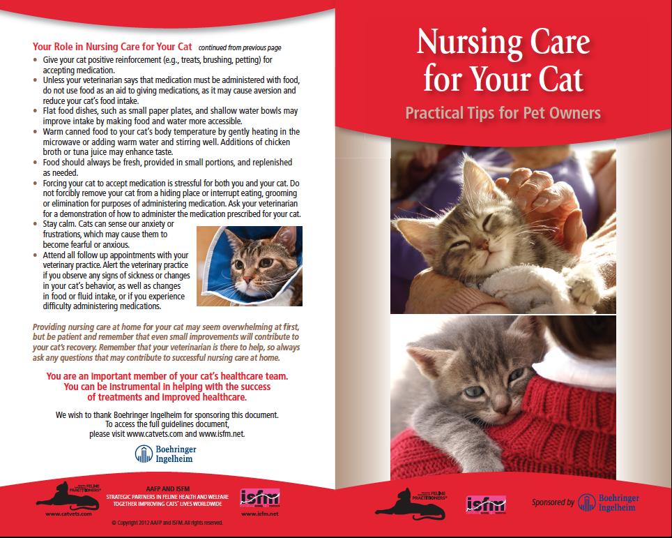 Nursing-care.png