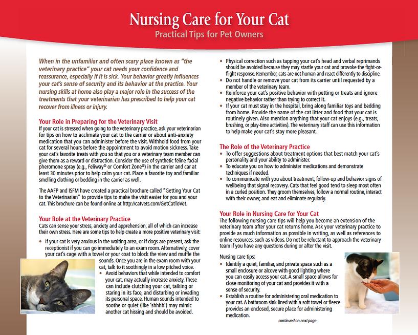 Nursing-care-2.png