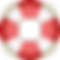 SOSciaLIFE logo.png