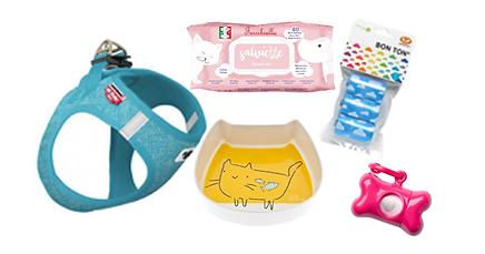 accessoires achien chats.png
