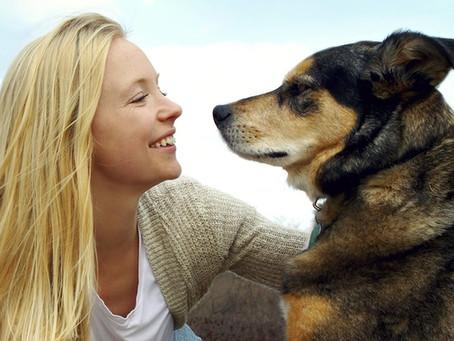 Les chiens peuvent-ils vraiment reconnaître notre visage ?