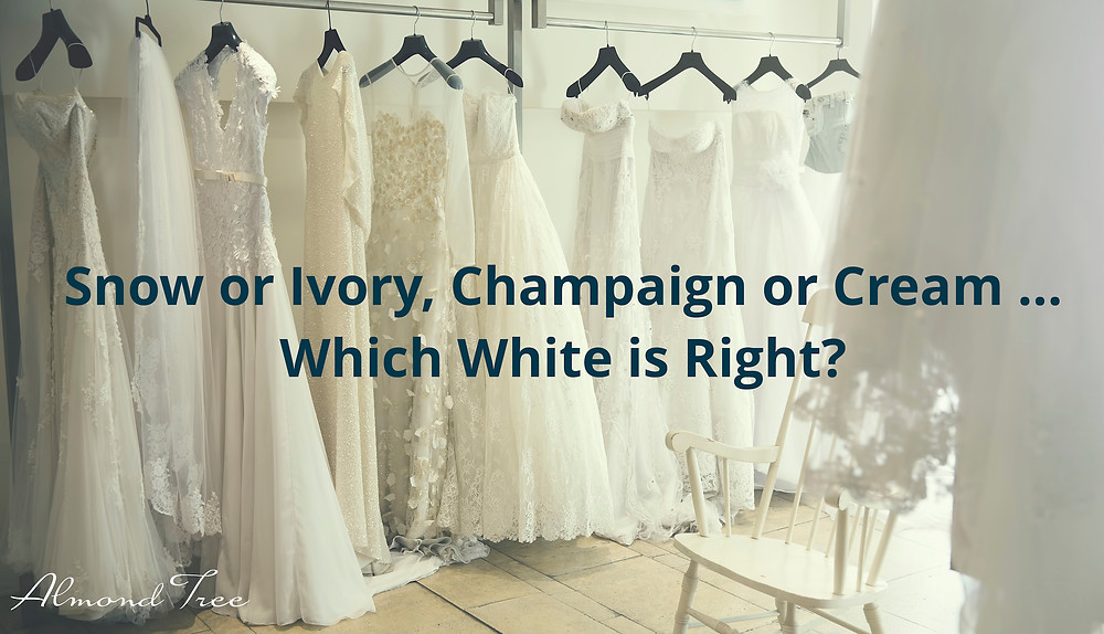 Wedding Gown Dress is White, Ivory, Cream, Champaign, and Beyond at Almond Tree Wedding Boutique