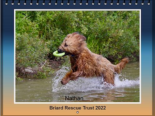 NEW 2022 Briard Calendar