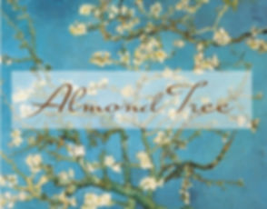 Almond Tree Wedding Boutique is te Best Bridal and Wedding Store in Phoenix, Scottsdale, Glendale, Tempe, and Surrounding Area