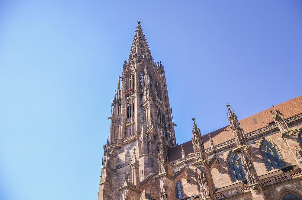 MapCity • FREIBURG im Breisgau | Scopri la nuova