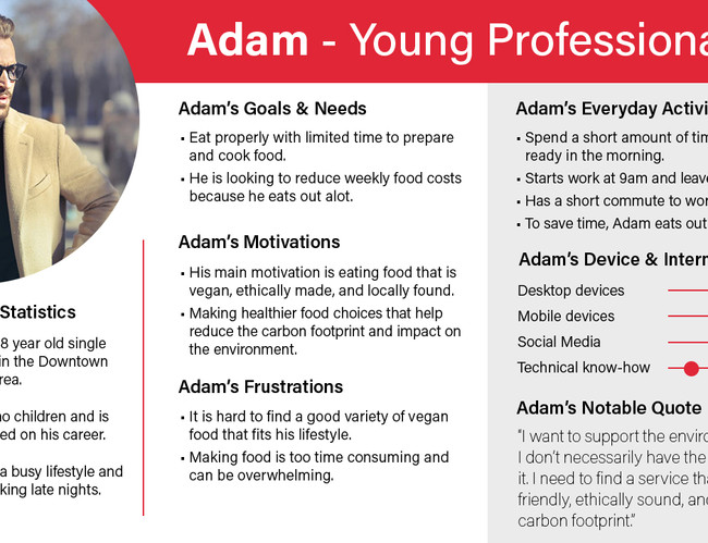 User Persona - Adam - Young Professional