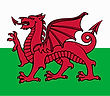 Mining Consultant based in Wales