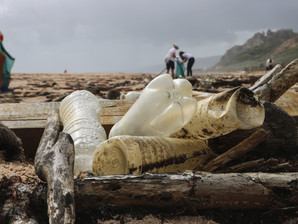 The eco-entrepreneurs waging war on plastic pollution in oceans