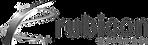 rubicon-software-logo-06729E6B2D-seeklog