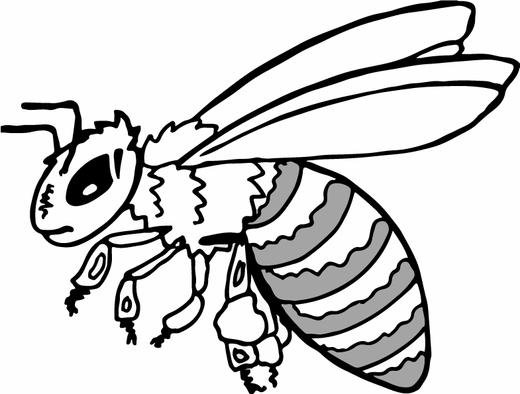 Honey-Bee-3.png
