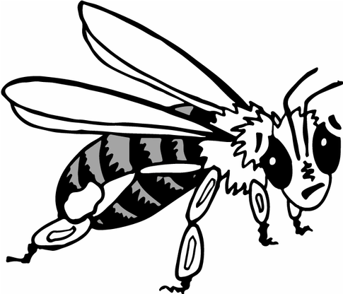 Honey-bee-2.png
