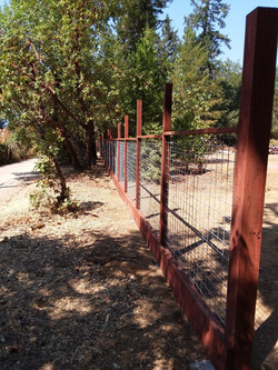 Hog wire panel fence