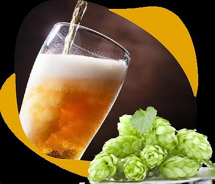 пивоврня Boner Beer, купить пиво в ивоварне, качественное пиво оптом,
