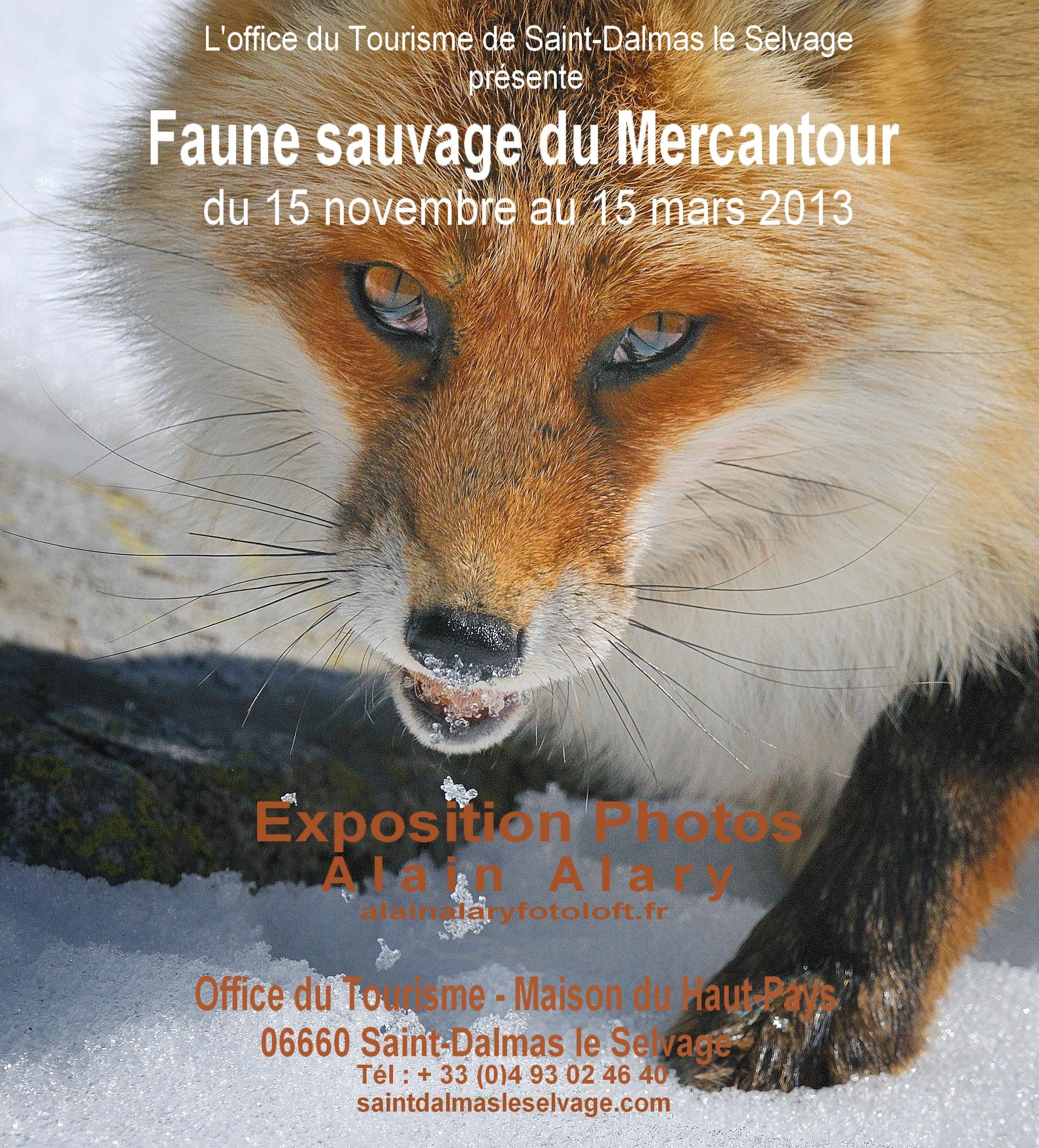 affiche expo Saint Dalmas le Selvage ok