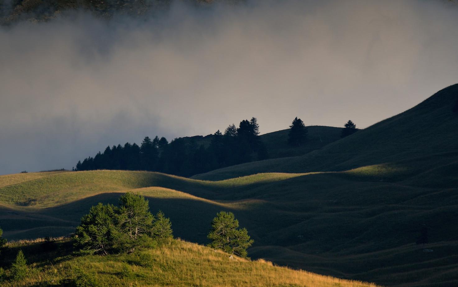 paysage au couchant
