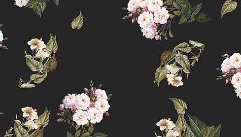 flowers-bg_edited.png