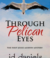 Audible Book for Through Pelican Eyes Now for sale on Amazon