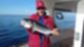 Authentique pêche 22