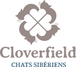 Cloverfield_logo_rvb_edited.png