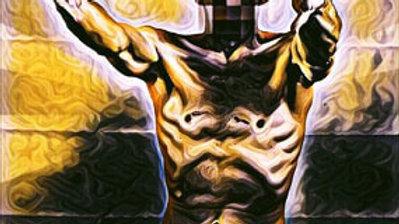 Subject 9- Non-Conformist 16 x 20 Canvas Print
