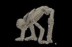 MANIKEN® Classic 10 - Reptilian