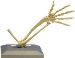 MidiMANIKEN™ Forearm + Hand