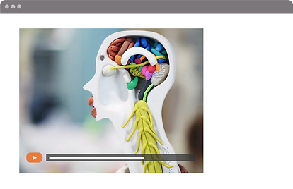 Browser Screen + Menu Space + Brain.png