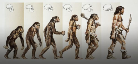 Microevolution: Part One