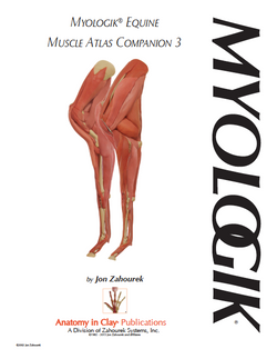 MYOLOGIK® Equine Atlas Companion