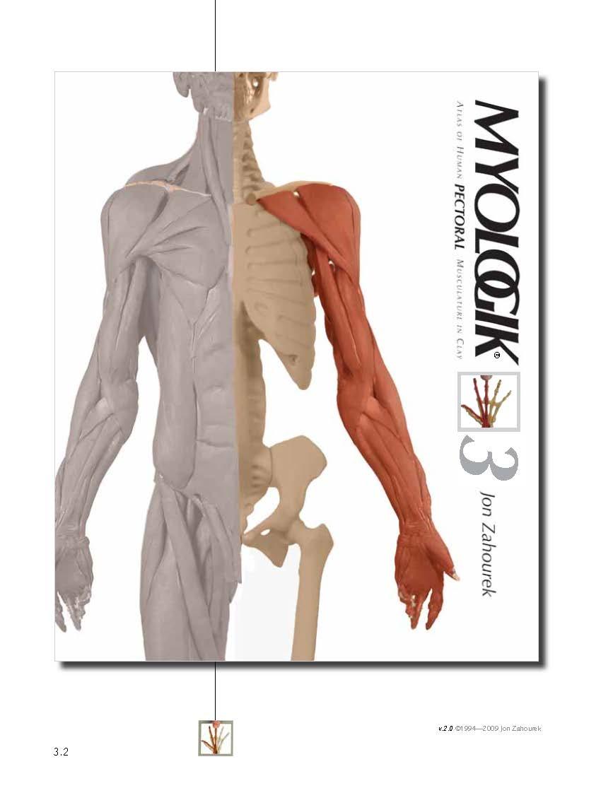 MYOLOGIK® Human Atlas - Volume Three