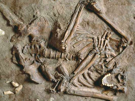Ancient Rib Cages & Us