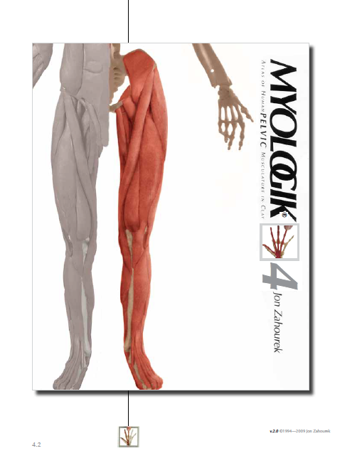 MYOLOGIK® Human Atlas - Volume Four