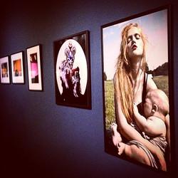 Instagram - My 'Madonna' series ®dariamarchik  #charityauction