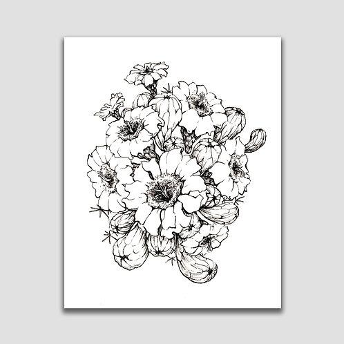 Black and White Saguaro Blossoms- 8x10 fine art print