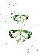Moth Invitation back with splatters.jpg