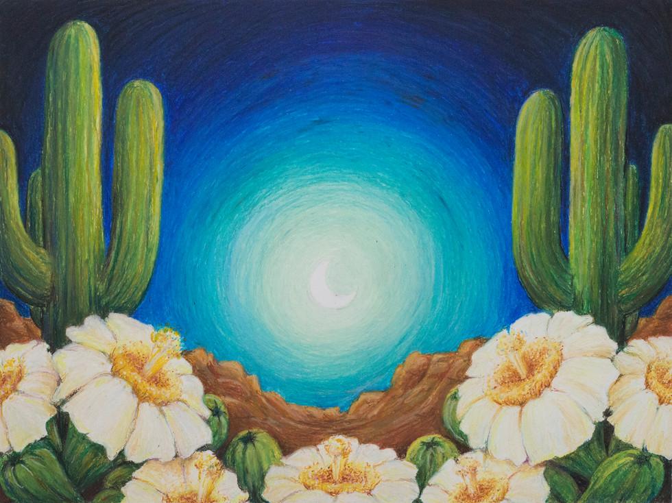 Desert at Night Oil Pastel