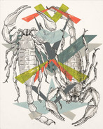 Scorpians-Scan.jpg