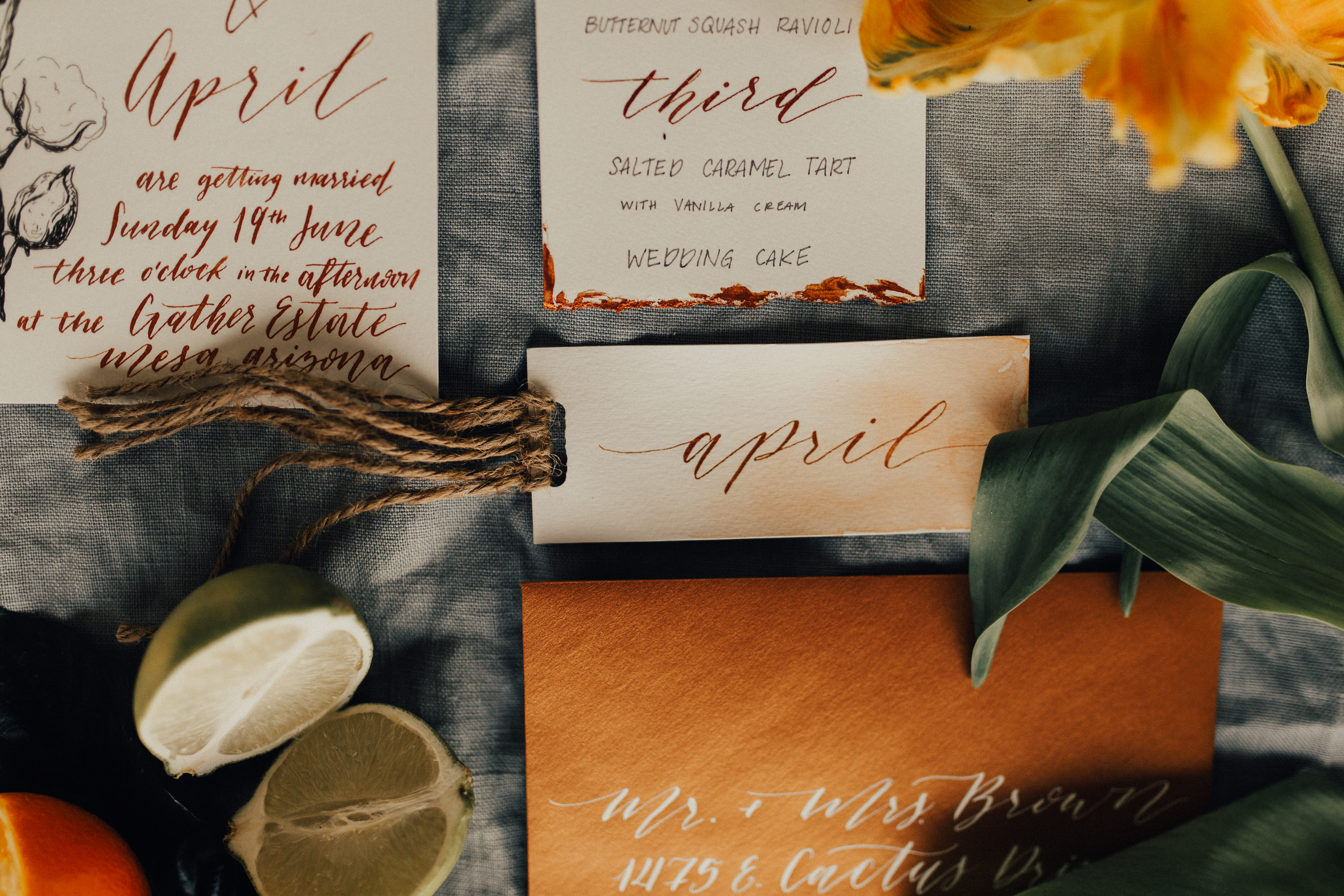 Copper and Peach Calligraphy
