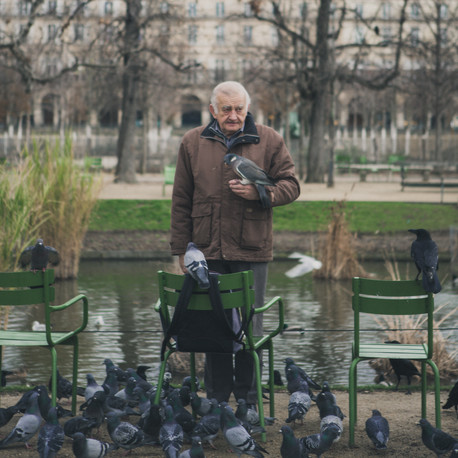 Man feeding birds. Paris, France