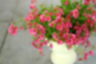 AdobeStock_73683474.jpg