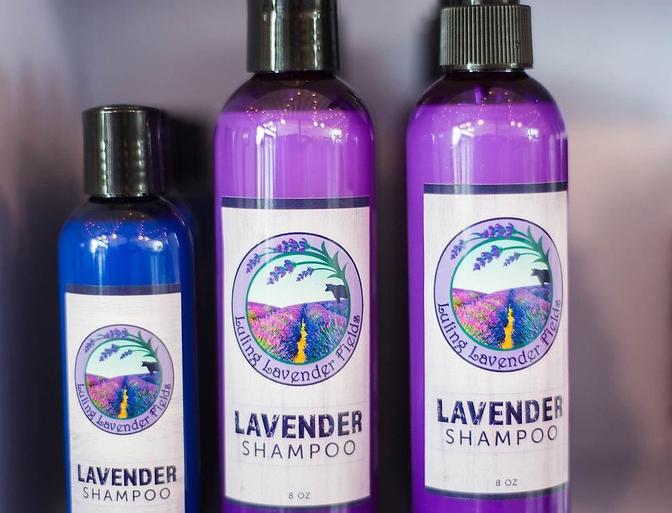 Lavender Shampoo 8oz.